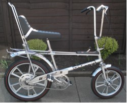 Determining the Age of a Raleigh